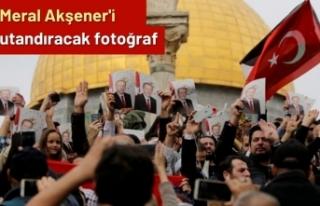 Ömer Çelik, Akşener'e fotoğraflarla cevap...