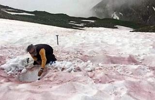 Alp Dağları'ndaki gerçeküstü manzara bilim...