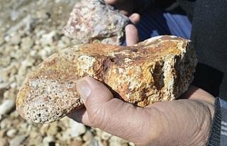 Altın müjdesi: Ağrı'da 20 ton altın 3,5...