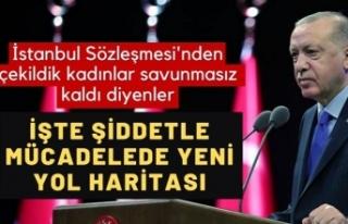 İstanbul Sözleşmesi'nin yerine 5 maddelik...