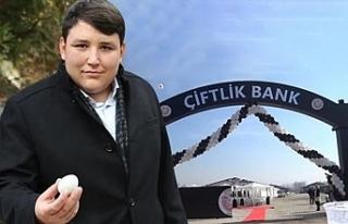 Teslim olan Tosuncuk'un paraları ne yaptığı...