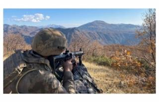 Şırnak'ta PKK'lı 4 terörist etkisiz...