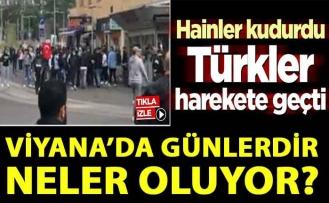 Viyana'da günlerdir neler oluyor? Hainler kudurdu, Türkler harekete geçti