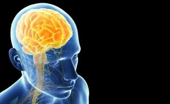 Beynimizin %10'unu Kullandığımız Efsanesi Neden Büyük Bir Yalan?
