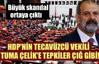 HDP'nin tecavüzcü vekili Tuma Çelik'e tepkiler çığ gibi!