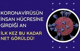 Koronavirüsün insan hücresine girdiği an ilk kez bu kadar net görüldü