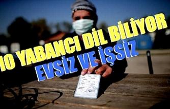 Bursa'da 10 yabancı dil bilen evsiz yardım bekliyor