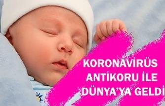 Hamileyken koronavirüse yakalanan annenin bebeği antikorlarla dünyaya geldi