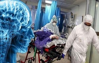 Ölümler başladı: Beyni çürüten gizemli hastalık patlak verdi