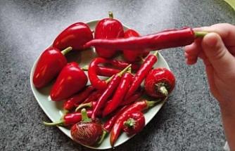 Uzmanlardan uyarı! Tüketimi hastalığa sebep olan besinler