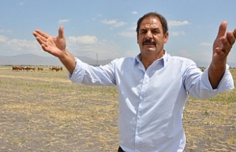 Erzurum'da 7 bin lira maaşla çalışacak yerli çoban bulunamıyor