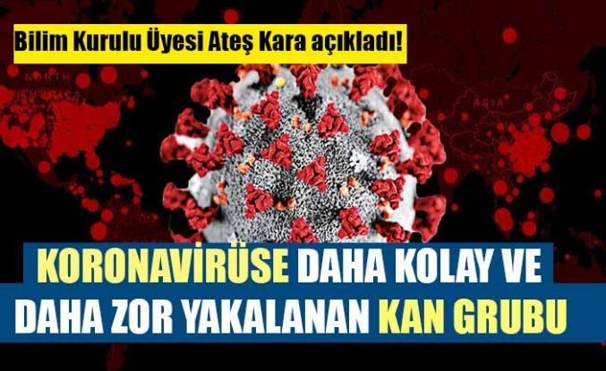 Bilim Kurulu Üyesi Ateş Kara açıkladı! Koronavirüse daha kolay ve daha zor yakalanan kan grubu